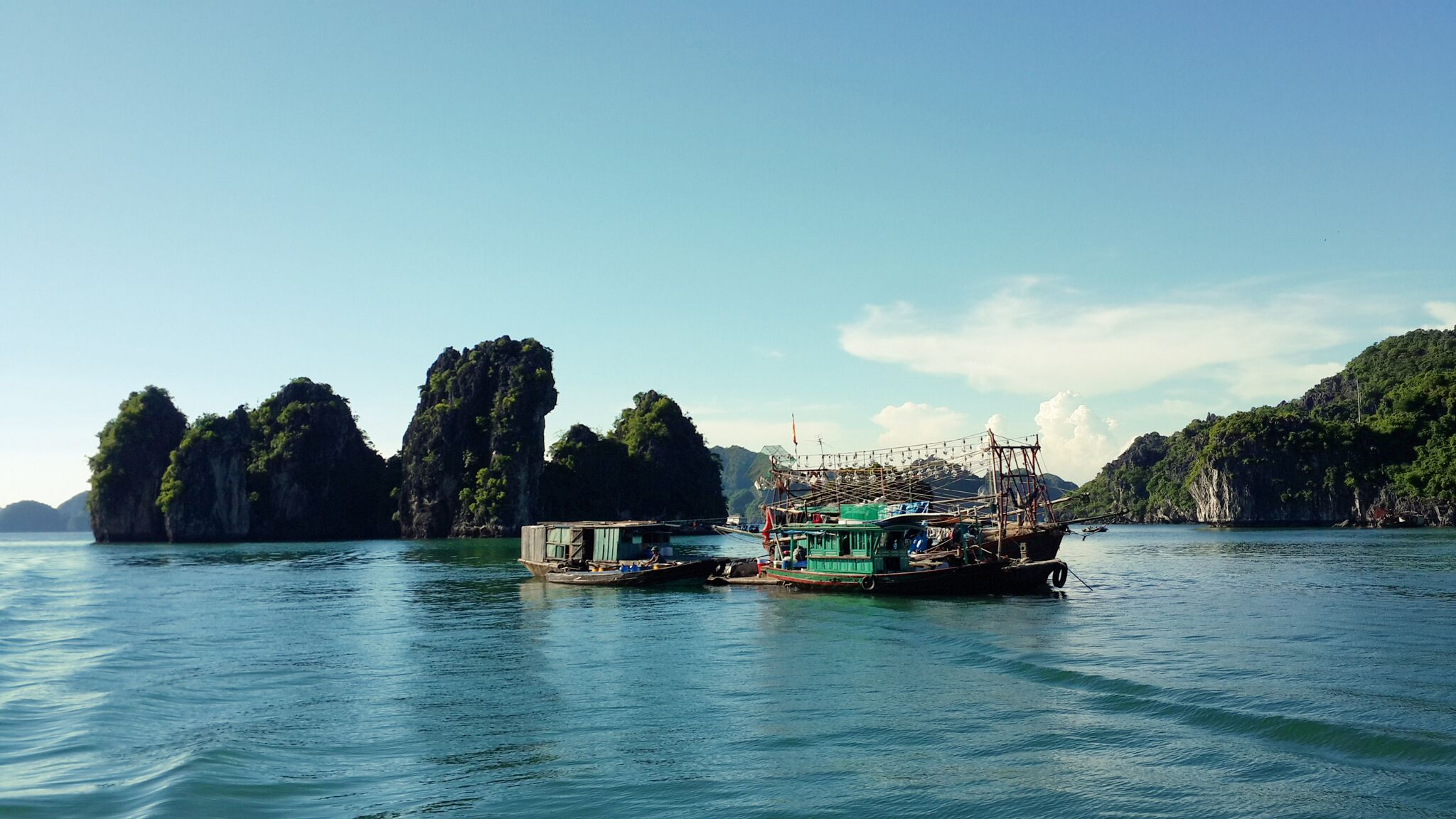 Halong gallery
